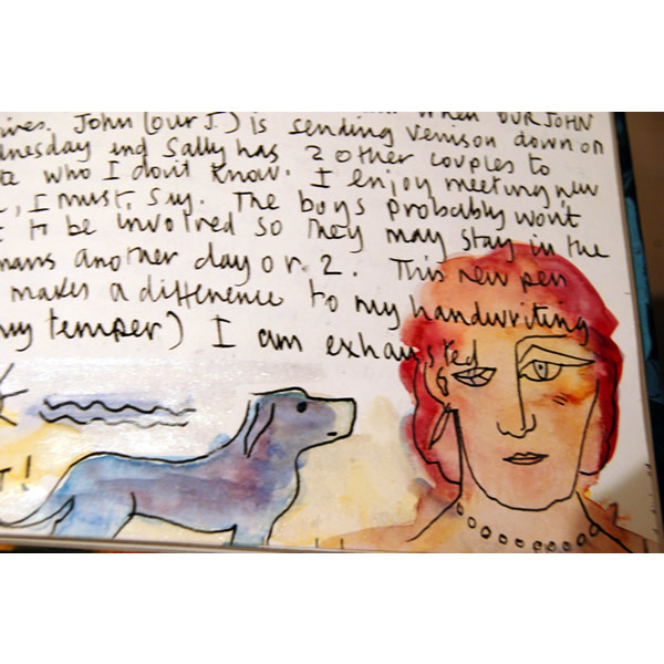 Mrs Soane's Diary - Pitzhanger installation inks and watercolour